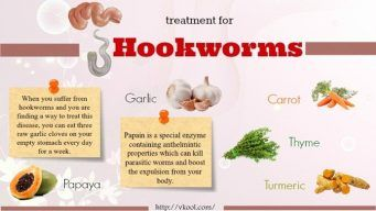 What Are the Best Treatments For Hookworm?